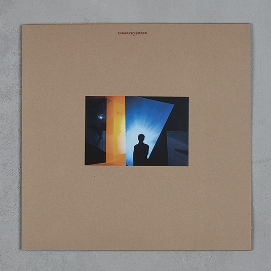 Einerbande Diary Of A Bad Man incl. Poster 12inch brown